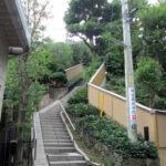 横浜英和女学院への坂道 2014年7月