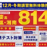 臨海セミナー 早慶高翠嵐・湘南 814 名の内訳 2019 実績
