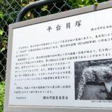 横浜緑ケ丘高校の敷地内から南側に平台貝塚 本牧岬台地上