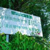 横浜翠陵高校 オープン入試 2021 は 32 人志願、5人合格